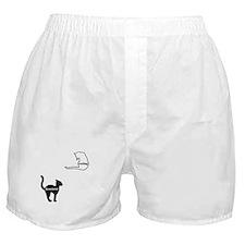 Basement Cat & Ceiling Cat Boxer Shorts