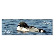 Loon preening Bumper Sticker