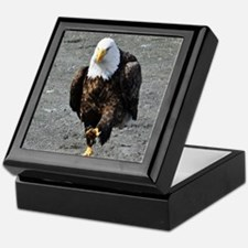 Bald Eagle Chase Keepsake Box
