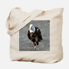Bald Eagle Chase Tote Bag
