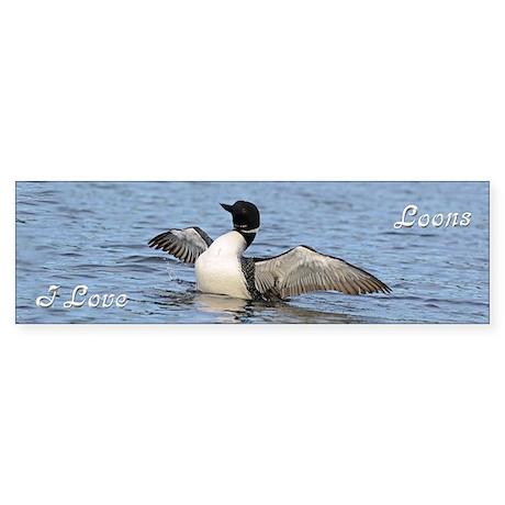 Common Loon Sticker (Bumper)