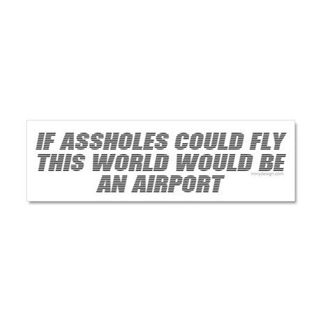 If assholes could fly.. Car Magnet 10 x 3