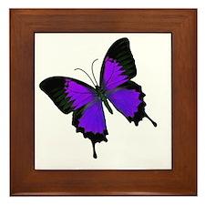 Purple Swallowtail Framed Tile