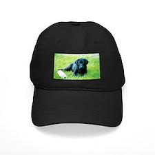 Black Lab Puppy Baseball Hat