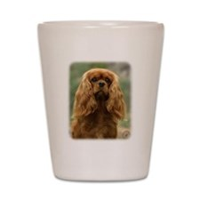 Cavalier King Charles Spaniel 9F51D-10 Shot Glass