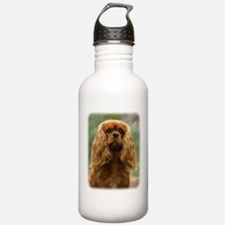 Cavalier King Charles Spaniel 9F51D-10 Sports Water Bottle