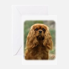 Cavalier King Charles Spaniel 9F51D-10 Greeting Ca