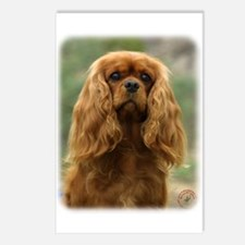 Cavalier King Charles Spaniel 9F51D-10 Postcards (