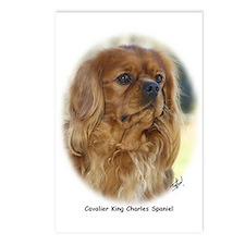 Cavalier King Charles Spaniel 9K27D-17 Postcards (