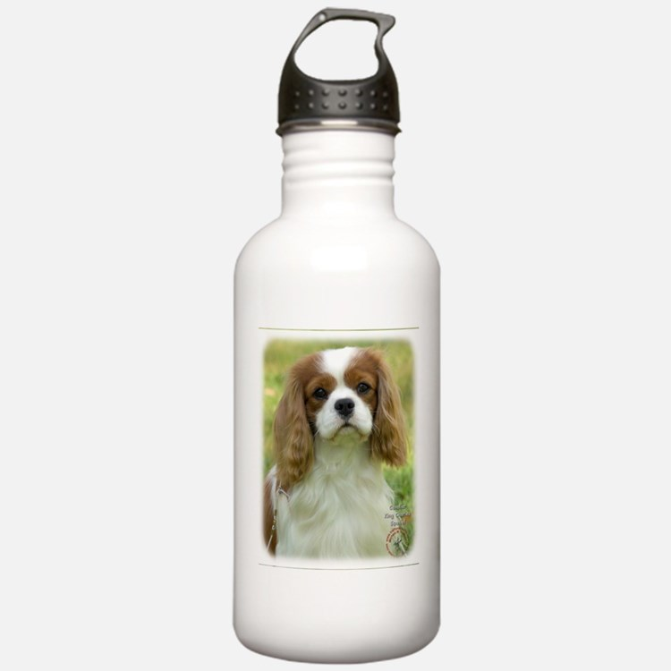 Cavalier King Charles Spaniel 9P032D-036 Water Bottle