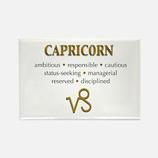 Capricorn Traits Rectangle Magnet (10 pack)