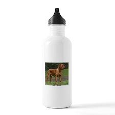 Dogue de Bordeaux 9Y201D-159 Sports Water Bottle