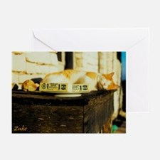 Zuke On Guard Greeting Cards (Pk of 10)
