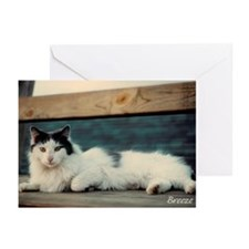 Breeze's Bench Greeting Cards (Pk of 10)