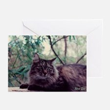 You Too Thinking Greeting Cards (Pk of 10)