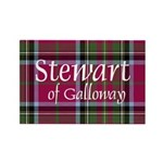 Stewart of Galloway Rectangle Magnet (100 pack)
