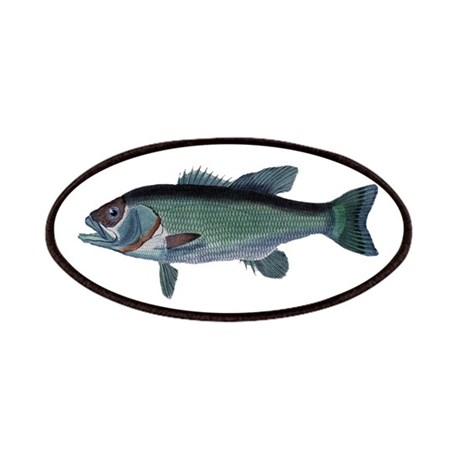 Vintage Engraving - Fish Patches
