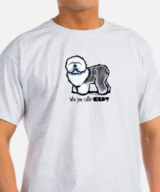 Funny 'Old' OES T-Shirt