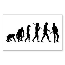 Evolution of Guitarist Decal