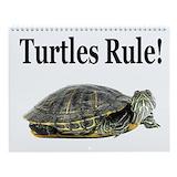 Tortoise calendar Calendars