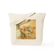 Ginger Spice Tote Bag