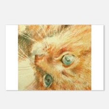 Ginger Spice Postcards (Package of 8)