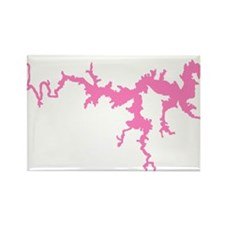 DRAGON {1 pink} solid Rectangle Magnet