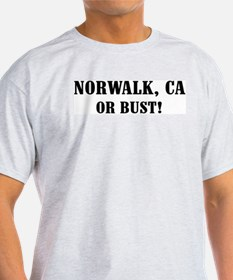 Norwalk or Bust! Ash Grey T-Shirt