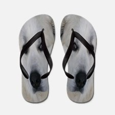 Great Pyrenees Flip Flops