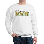 0384 - Fly like you've ... Sweatshirt