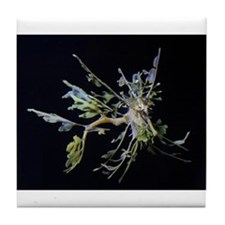 Leafy Flies Tile Coaster