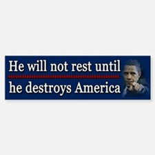 America Destroyed Car Car Sticker