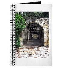 Alamo Walk Journal