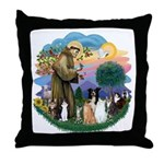 StFrancis2 / Throw Pillow