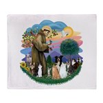 StFrancis2 / Throw Blanket