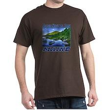 Acadia National Park, Maine T-Shirt