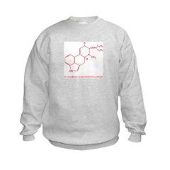 LSD Molecule Sweatshirt
