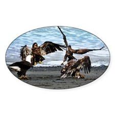 Eagles Greeting or Conflict? Decal