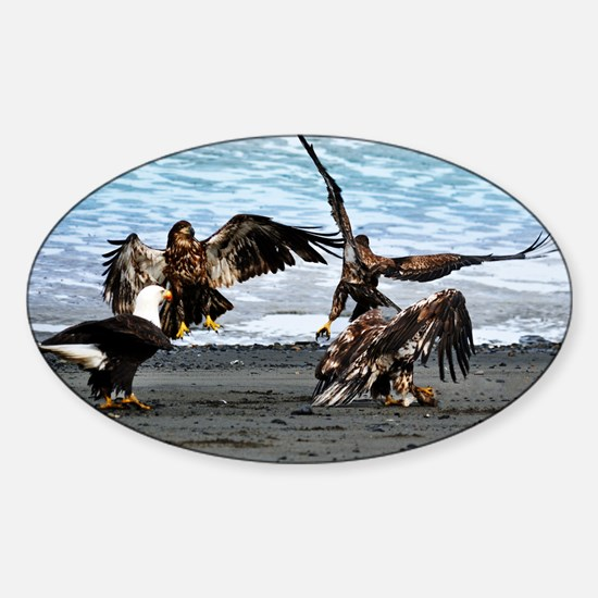 Eagles Greeting or Conflict? Sticker (Oval)