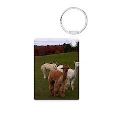 3 Alpacas Keychains