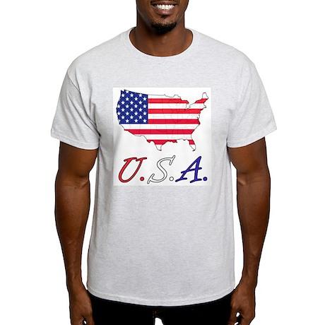American Flag t-shirt (Grey)