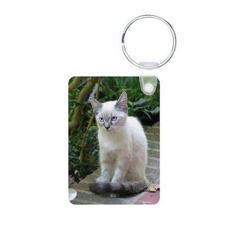 Blue Eyed Kitten - Aluminum Photo Keychain