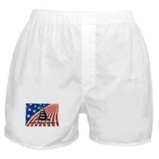 Dont Tread on Me American Fla Boxer Shorts