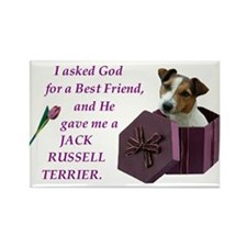 God Gave Me A Jack Russell 2 Rectangle Magnet (100
