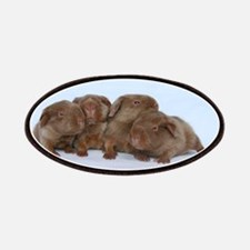 Beige Tan Guinea Pig Babies Patches