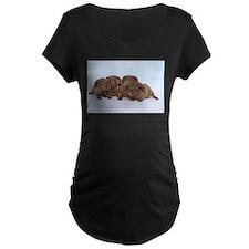 Beige Tan Guinea Pig Babies T-Shirt
