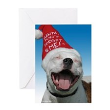 Pit Bull JOY Greeting Card