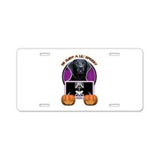 Just a Lil Spooky Labrador Aluminum License Plate