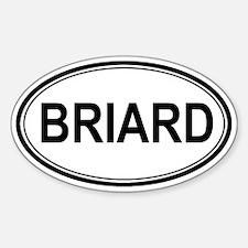 Briard Euro Oval Decal