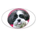 Funny Shih Tzu Sticker (Oval 10 pk)